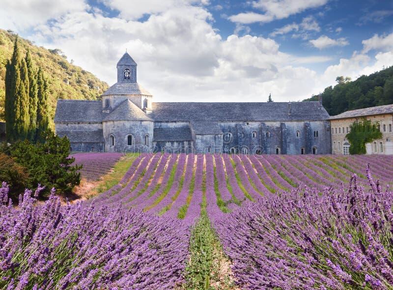 Senanque修道院在横谷,法国 图库摄影