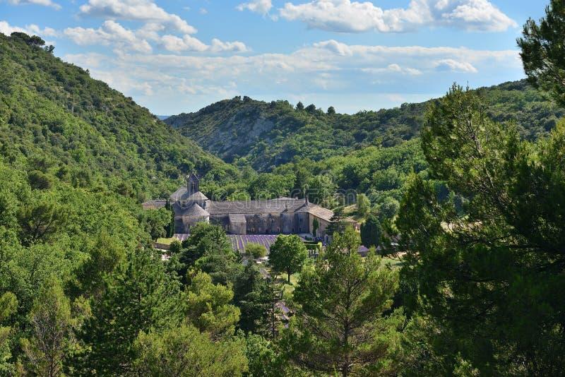 Senanque,法国修道院 免版税库存图片