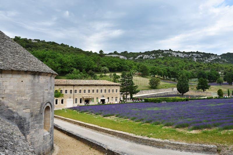 Senanque,法国修道院 库存图片