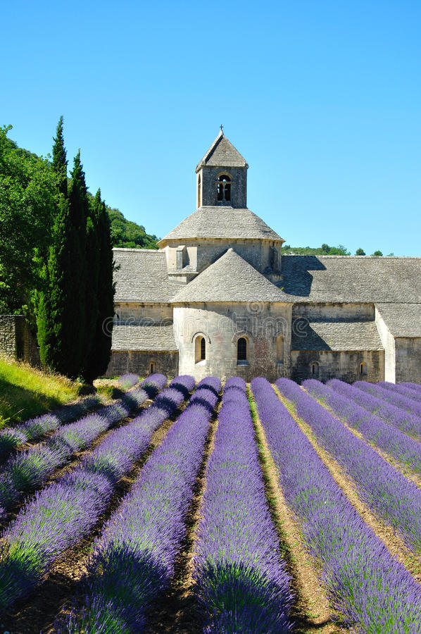 Senanque-Abtei mit Lavendelfeldern lizenzfreie stockbilder