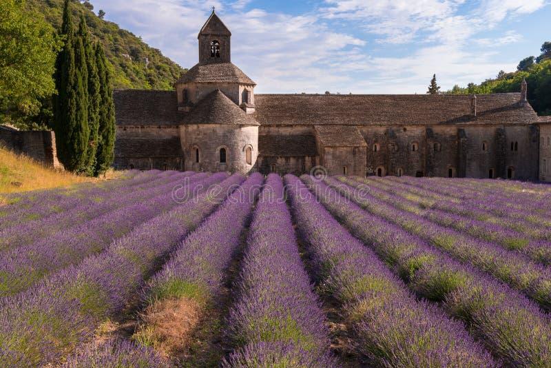 Senanqueabdij met een lavendelgebied, de Provence royalty-vrije stock afbeelding