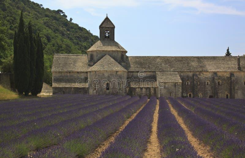 Senanqueabdij met Lavendel royalty-vrije stock fotografie