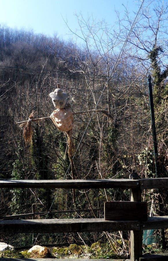 Senarega: een vogelverschrikker genoemd Charlie royalty-vrije stock afbeeldingen