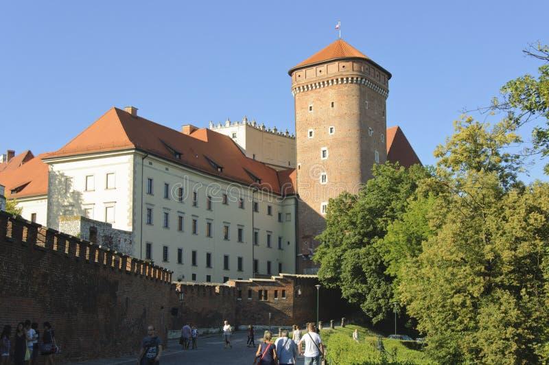 Senatorɾn; s-torn av den Wawel slotten arkivbild