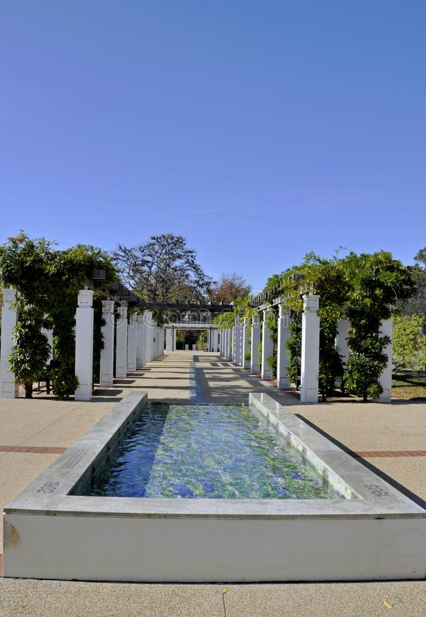 Senats-Rosengarten, Canberra lizenzfreie stockfotos