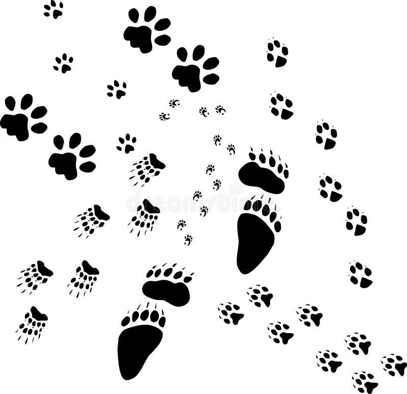 Senda para peatones animal stock de ilustración