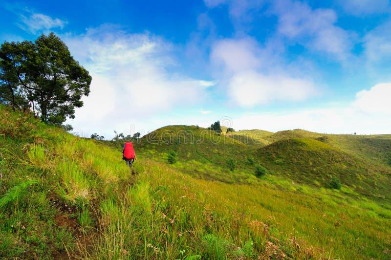 Senderismo para hombre dos en la montaña de Prau, Dieng, Indonesia imágenes de archivo libres de regalías