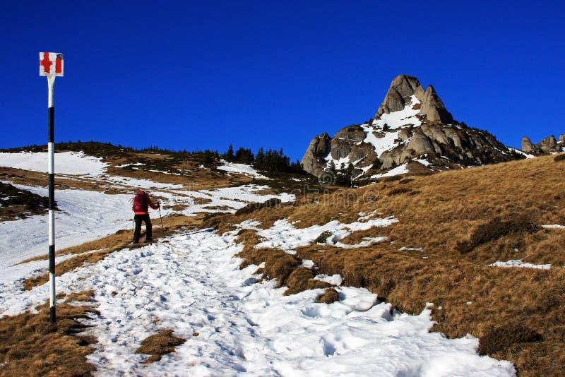 Senderismo turístico a través de la nieve hacia las montañas de Ciucas, Rumania foto de archivo
