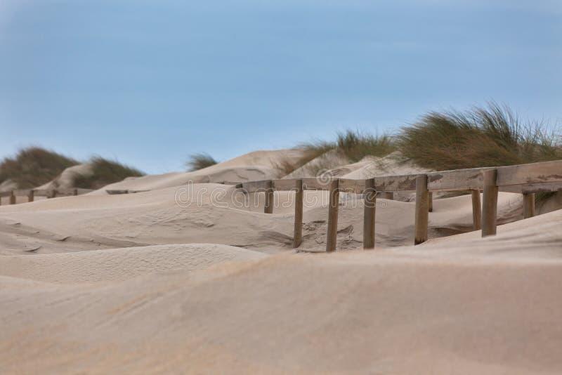 Sendero de madera a través de las dunas en la playa del océano en Portugal foto de archivo