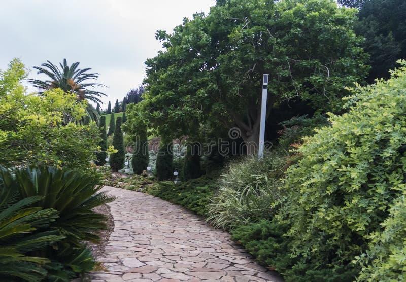 Sendero de piedra en un parque de la ciudad de playa Camino que camina vacío entre los árboles y los arbustos verdes en jardín he foto de archivo libre de regalías