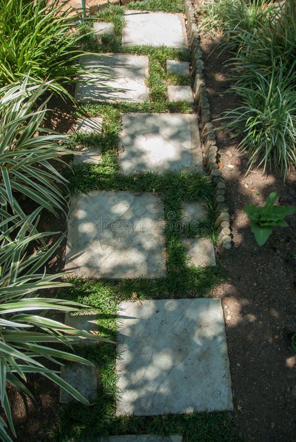 Sendero e hierba del jardín fotografía de archivo libre de regalías