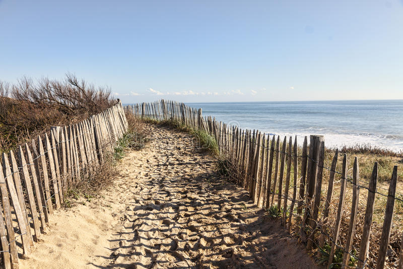 Sendero en la duna atlántica en Bretaña fotos de archivo libres de regalías