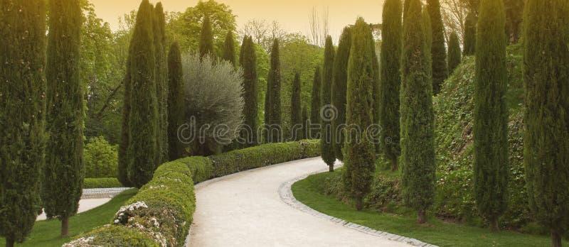 Sendero en un jardín con los cipreses imagen de archivo