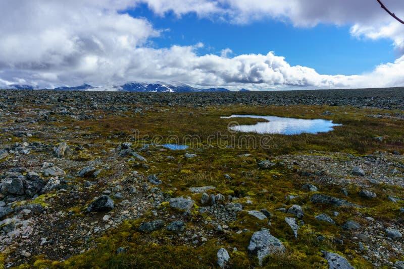 Sendero que lleva a través de parque nacional en Noruega imágenes de archivo libres de regalías