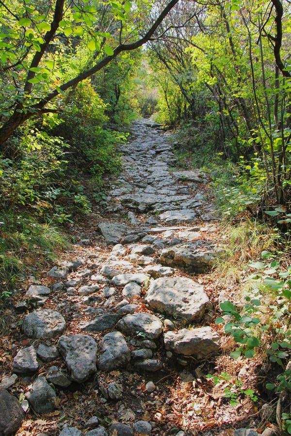 Sendero rocoso en las montañas fotos de archivo libres de regalías