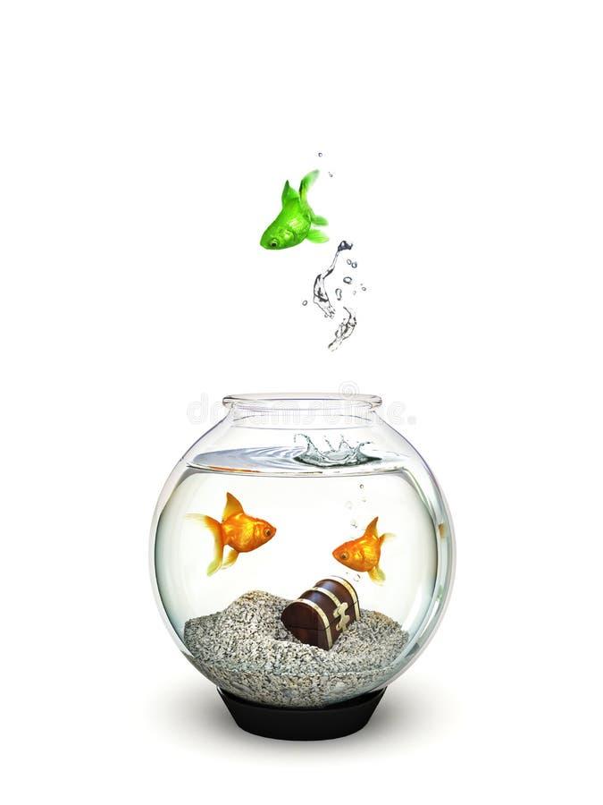 Saltar diferente, verde dos peixes de um fishbowl do peixe dourado ordinário. ilustração royalty free