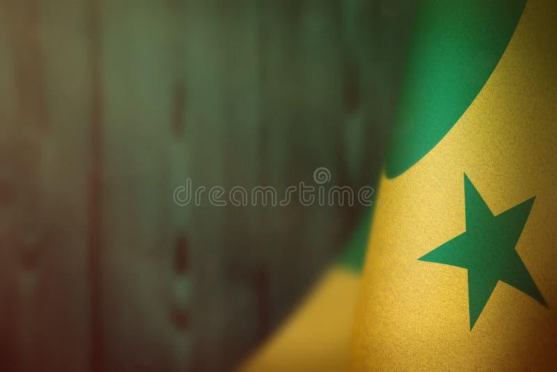 Senegal-Flagge für Ehre des Veteranentages oder -Volkstrauertags Ruhm zu den Senegal-Helden des Kriegskonzeptes auf der Knickente lizenzfreie stockbilder
