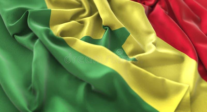 Senegal-Flagge gekräuselter schön wellenartig bewegender Makronahaufnahme-Schuss lizenzfreie stockfotos