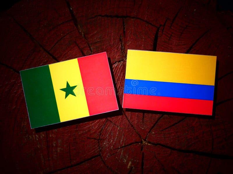 Senegal-Flagge mit kolumbianischer Flagge auf einem Baumstumpf lizenzfreie stockfotografie