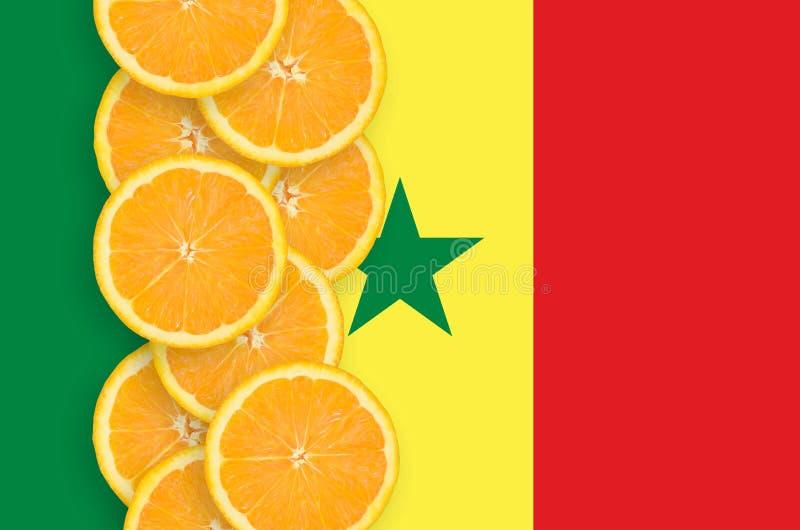 Senegal-Flagge und vertikale Reihe der Zitrusfruchtscheiben lizenzfreies stockbild