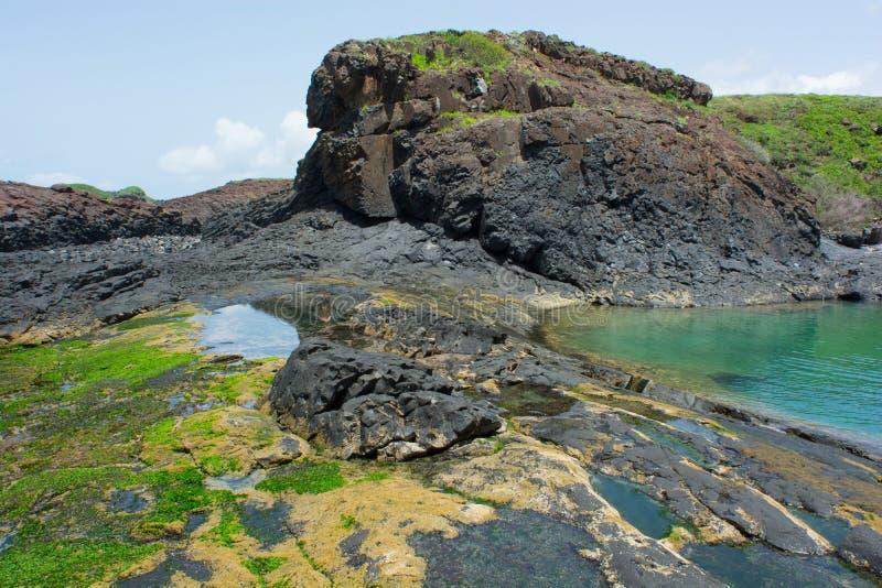 Senegal, Insel de la Madeleine stockbild