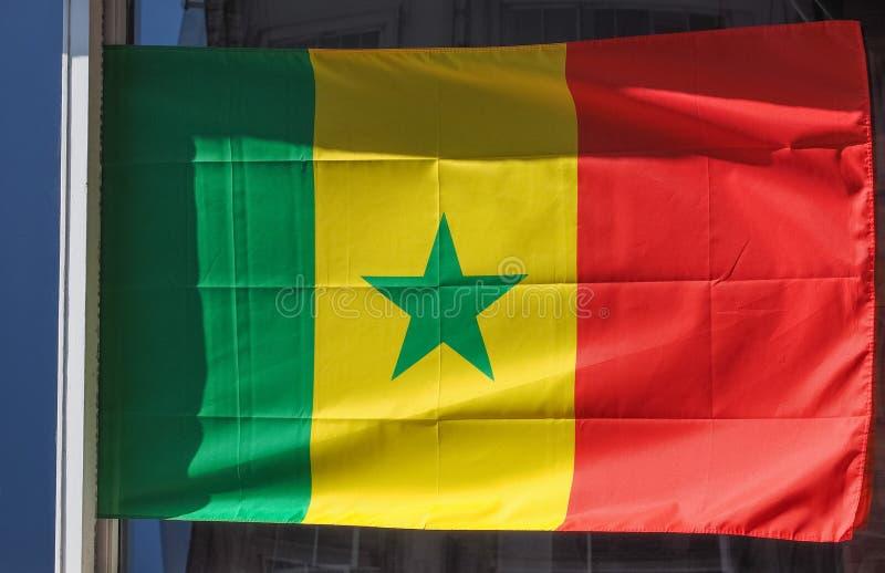 Senegalesische Flagge von Senegal stockfotografie