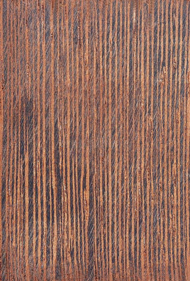 Seneplantsiamea, Siamese kassieboom, kassod boom, cassod boom, het hout van de kassieboom treewood boom royalty-vrije stock fotografie