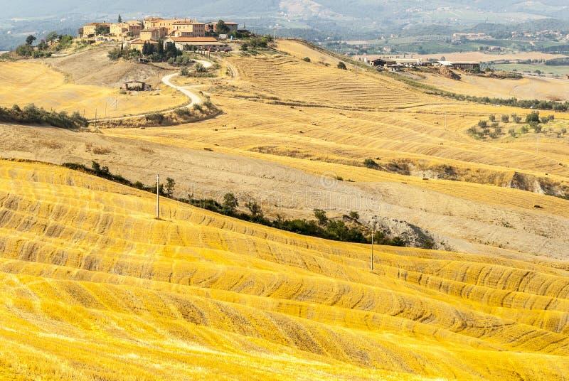 Senesi της Κρήτης, χαρακτηριστικό τοπίο στο d'Orcia Val στοκ φωτογραφία με δικαίωμα ελεύθερης χρήσης