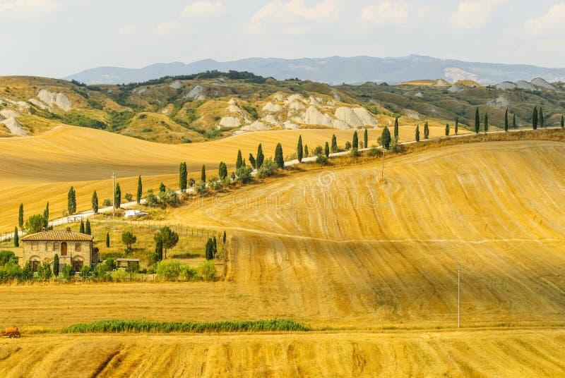 Senesi της Κρήτης, χαρακτηριστικό τοπίο στο d'Orcia Val στοκ φωτογραφίες