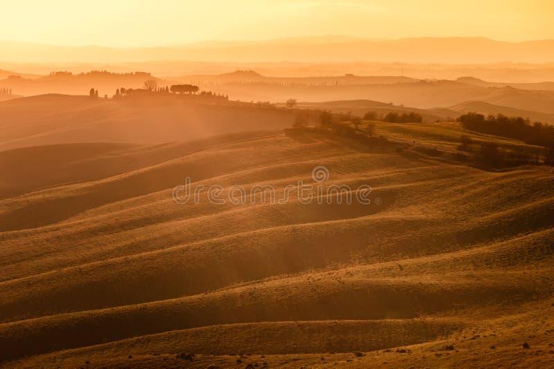 Senesi de Creta, Rolling Hills en puesta del sol. Paisaje rural cerca de Siena. Toscana, Italia fotografía de archivo