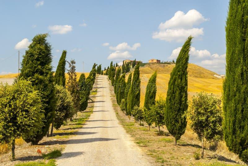 Senesi van Kreta, kenmerkend landschap in d'Orcia Val royalty-vrije stock fotografie