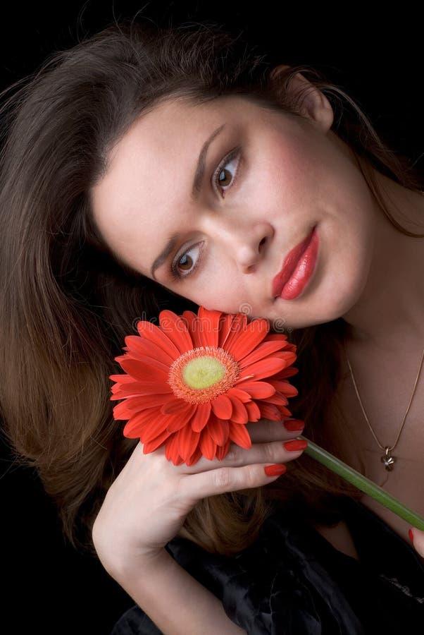 Senhora bonita com gerber vermelho. Retrato fotografia de stock
