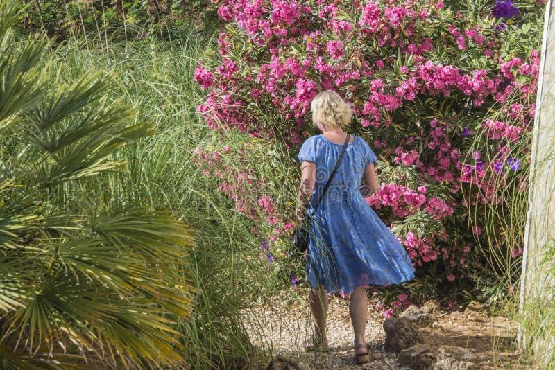 Senhora bonita no vestido azul fotos de stock