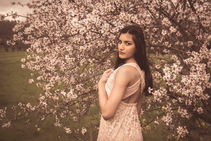 Senhora bonita nova atrativa, apreciando flores da flor da ameixa da mola imagens de stock