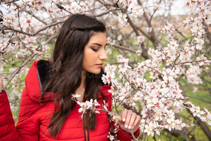 Senhora bonita nova atrativa, apreciando flores da flor da ameixa da mola fotos de stock royalty free