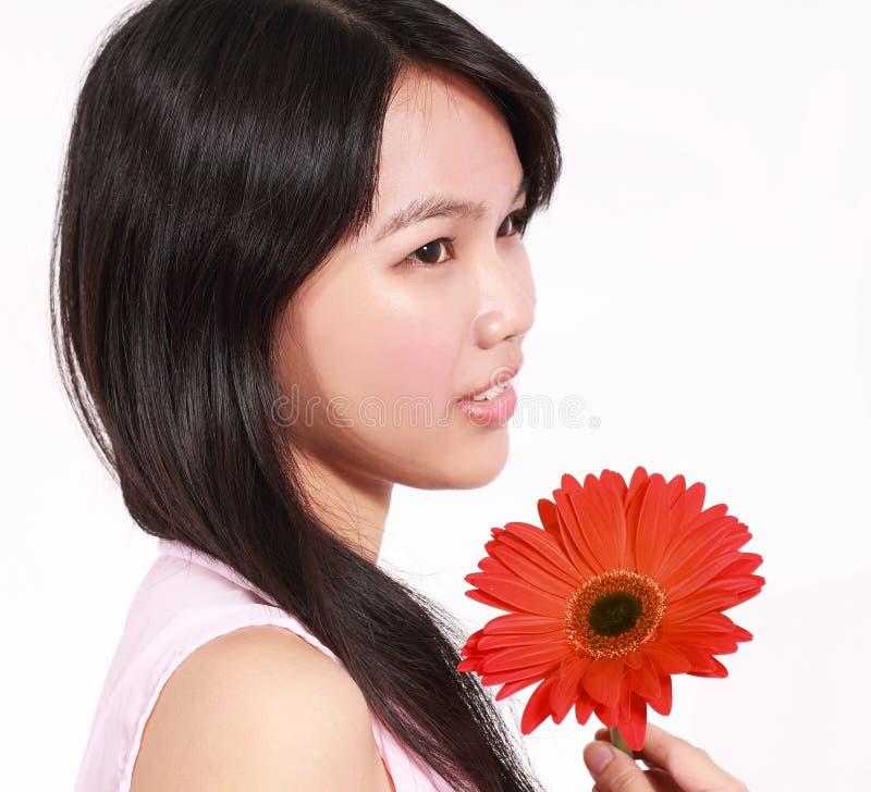 Senhora com flor do gerbera imagem de stock