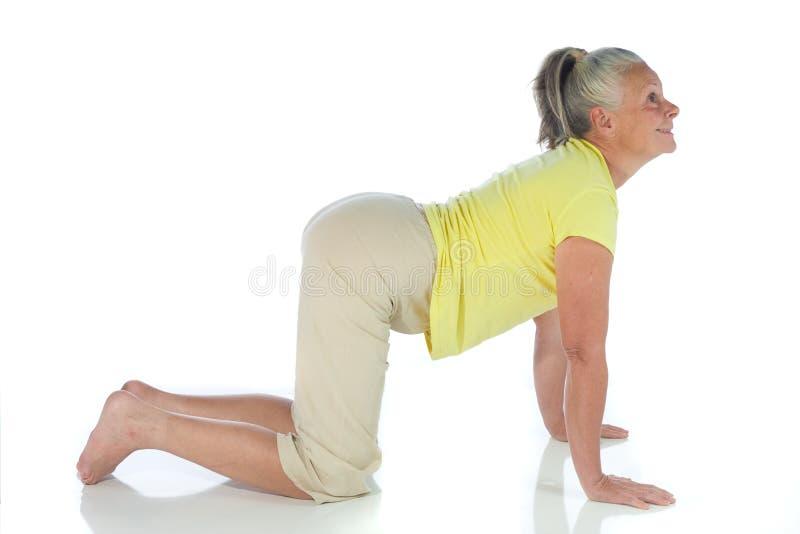 Senhora da ioga imagem de stock