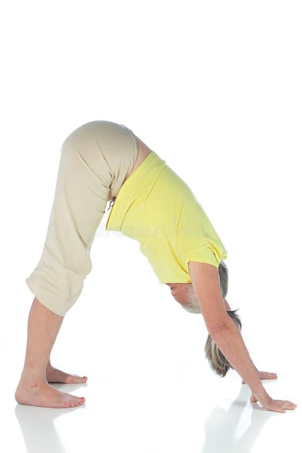Senhora da ioga fotos de stock