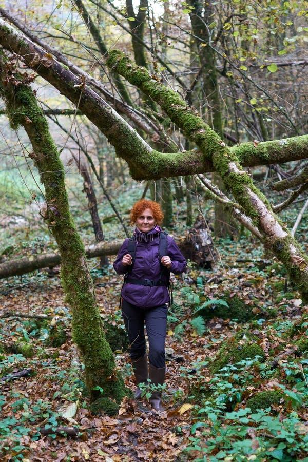Senhora do caminhante com a trouxa na floresta fotos de stock