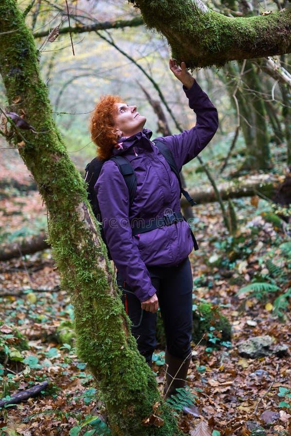 Senhora do caminhante com a trouxa na floresta imagem de stock