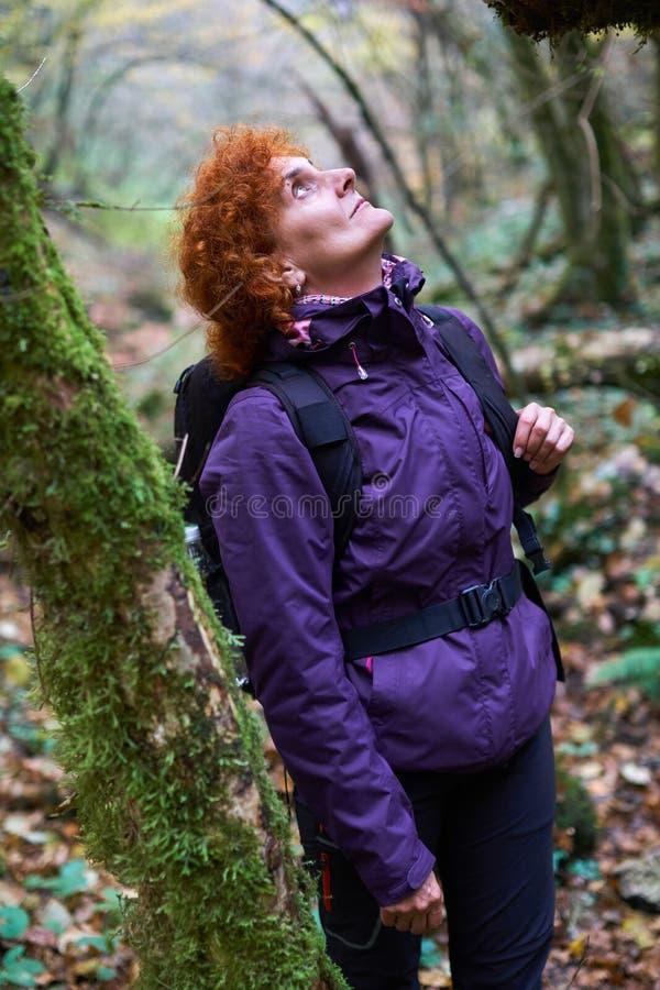 Senhora do caminhante com a trouxa na floresta fotografia de stock