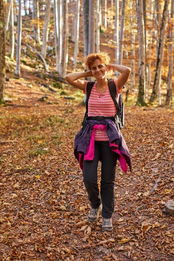 Senhora do caminhante nas madeiras fotografia de stock