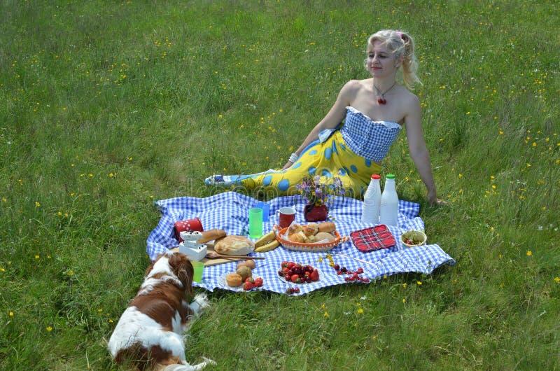 Senhora e cão no piquenique imagens de stock royalty free
