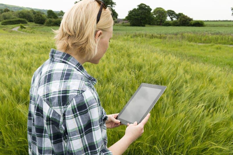 Senhora em um prado que olha fixamente na tela vazia do tablet pc fotografia de stock