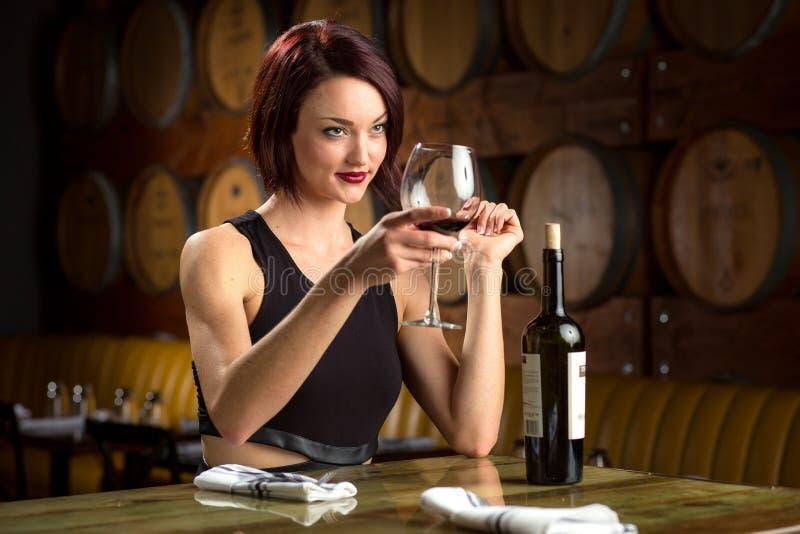 A senhora guarda o vidro do vinho para elogios brinda em um vinhedo da adega do partido de jantar elegante imagem de stock royalty free