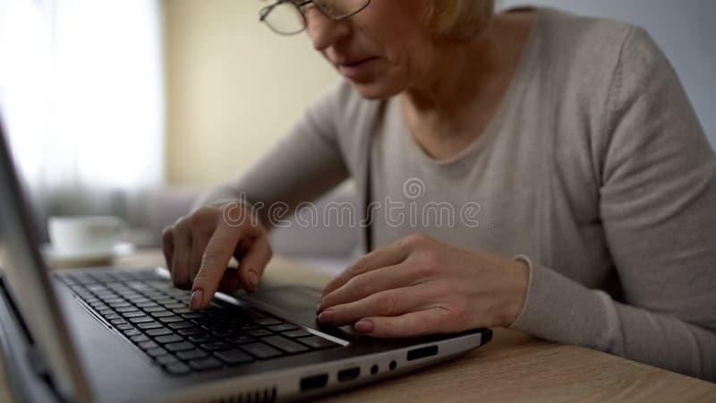 Senhora idosa que procura a chave no portátil em casa, treinamento em linha de cursos de computador imagens de stock royalty free