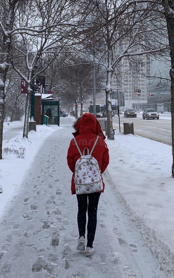 Senhora no inverno vermelho fotografia de stock royalty free
