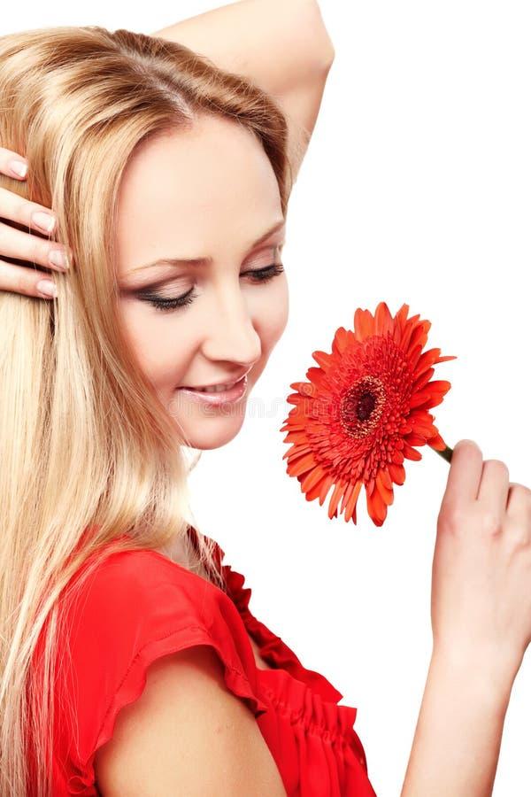 Senhora nova com gerbera vermelho fotografia de stock royalty free