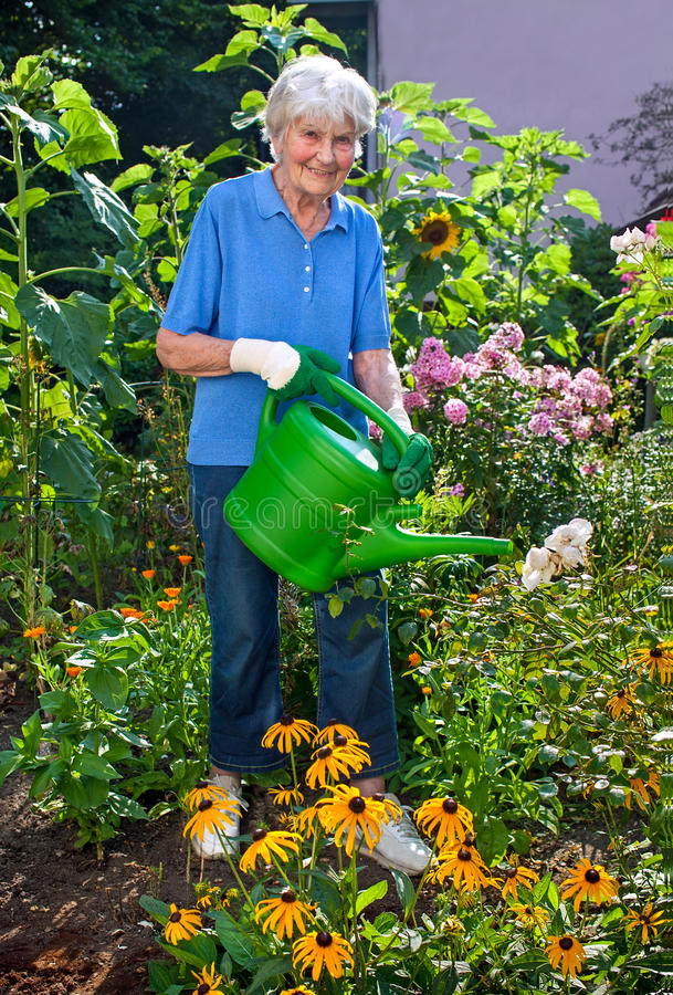 Senhora superior Watering suas flores no jardim imagem de stock royalty free