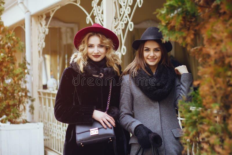Senhoras elegantes fotos de stock royalty free